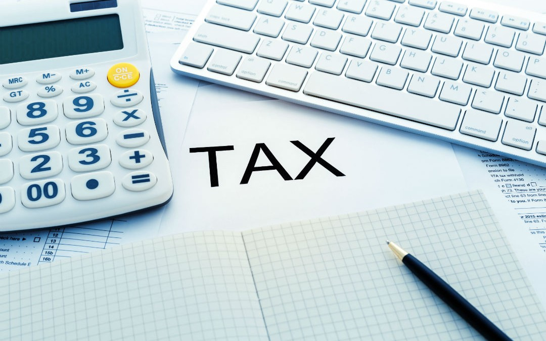 4 Things to Do When Your Company Receives its First Profits Tax Return
